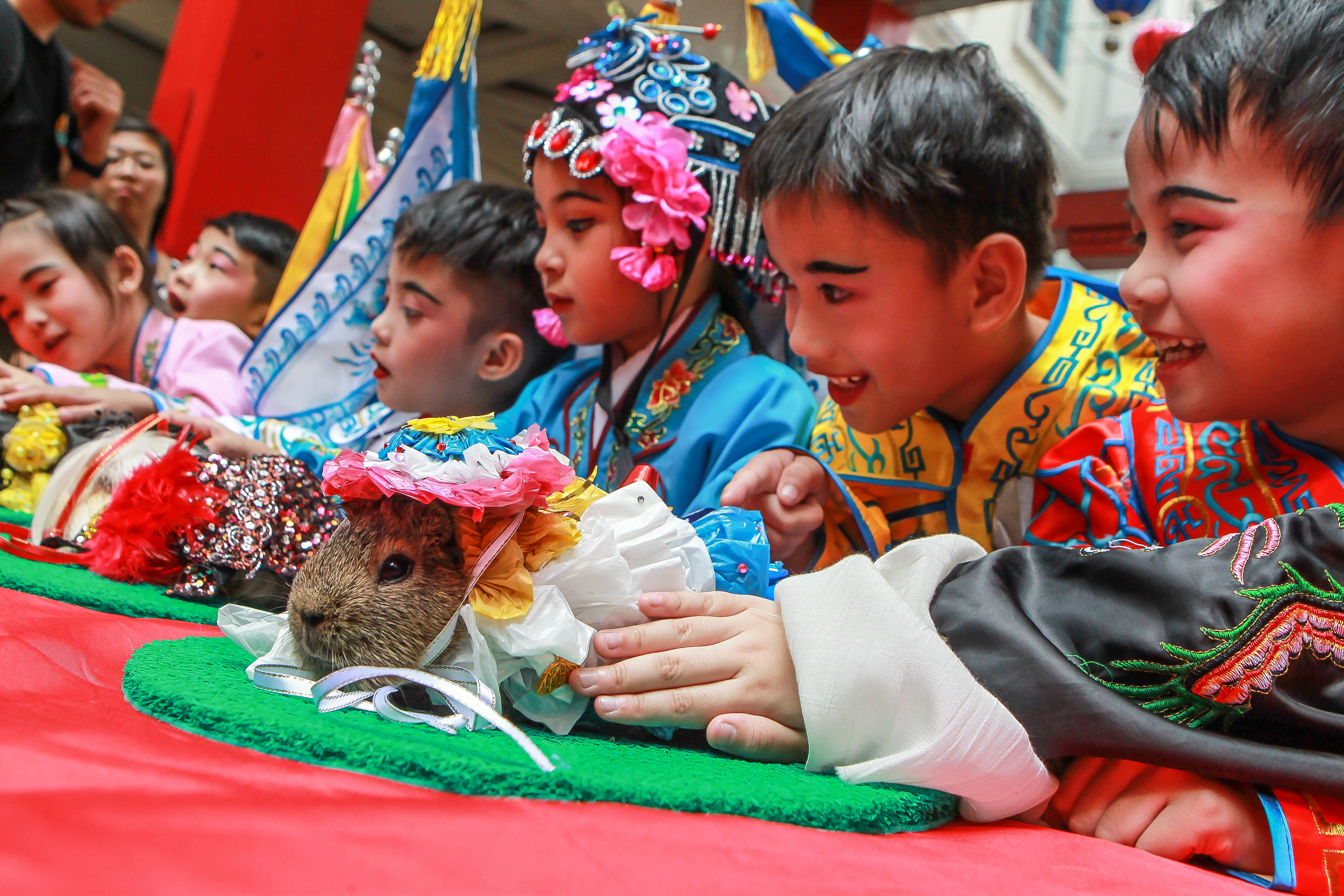 PHILIPPINES-MANILA-CHINESE LUNAR NEW YEAR-CELEBRATIONS